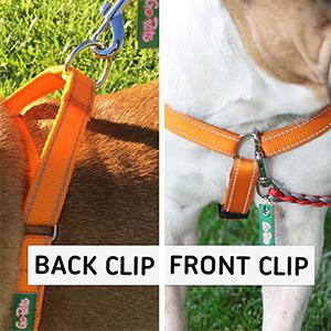 Cvmedqhlqpam Ux Ttw on Orange Reflective Dog Harness