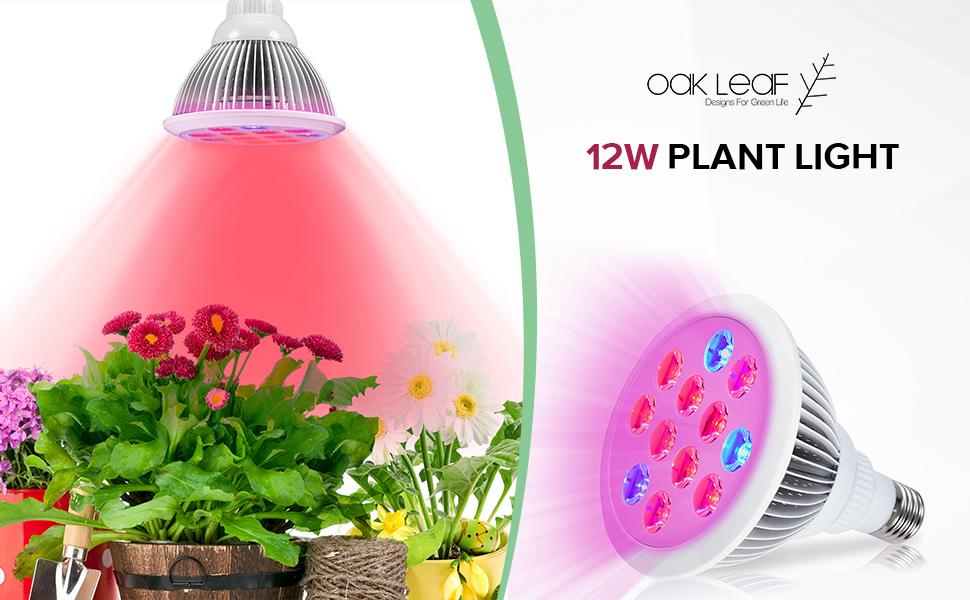 led grow light bulb oak leaf sun blaster. Black Bedroom Furniture Sets. Home Design Ideas