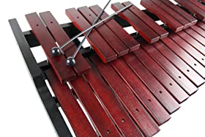 Amazon.com: Gearlux 37-Key Xylophone with Mallets, Stand