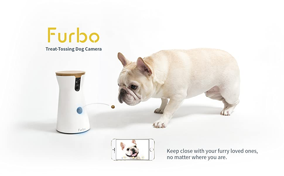 Amazon Com Furbo Dog Camera Hd Wifi Cam 2 Way Audio