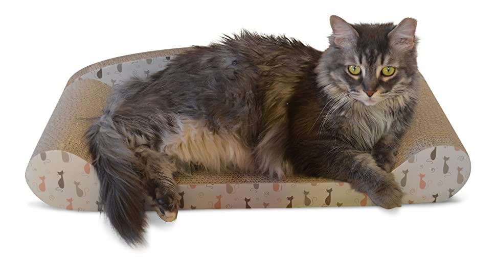 Keep Your Cat Healthy And Active With The Cat Scratcher Sofa Bed. Cats  Scratch And Claw At Whatever They Can To Keep Their Claws Healthy And  Trimmed.