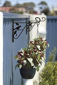 Amagabeli Hanging Plants Bracket 10'' Wall Planter Hook