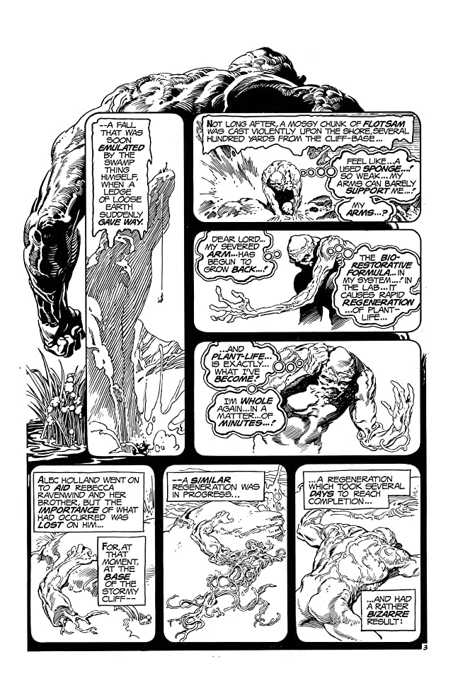 click for super-sized previews of Swamp Thing (1972-1976) #19