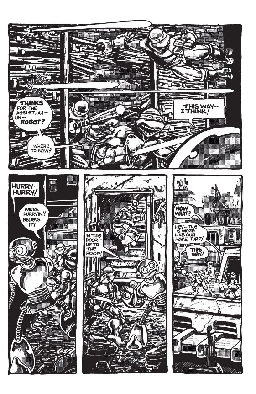Teenage Mutant Ninja Turtles: Black & White Classics #5