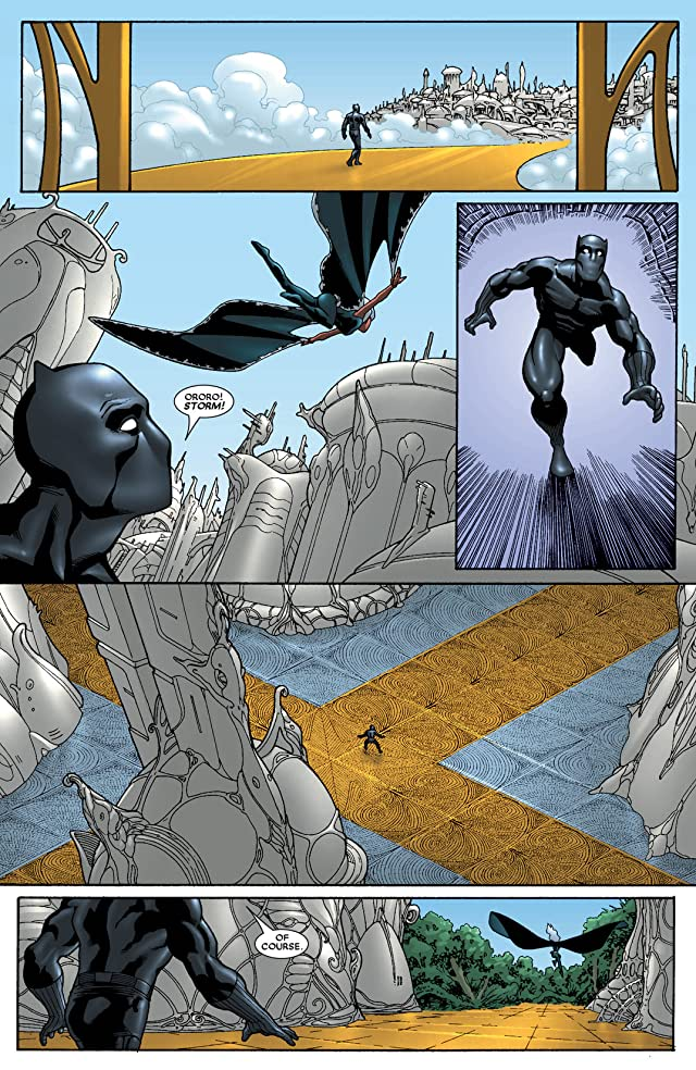 click for super-sized previews of Black Panther (2005-2008) #31