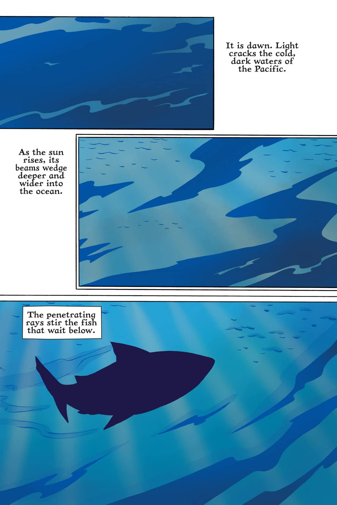 XOC: Journey of A Great White: Preview