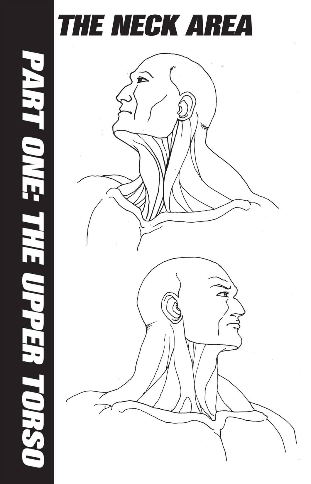 How To Draw Manga Vol. 11
