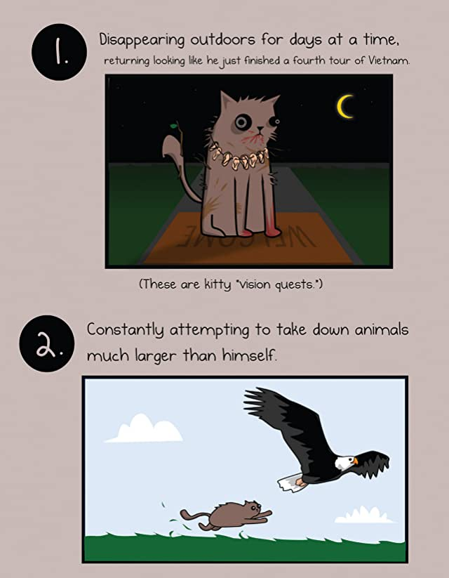 click for super-sized previews of How to Tell If Your Cat Is Plotting to Kill You