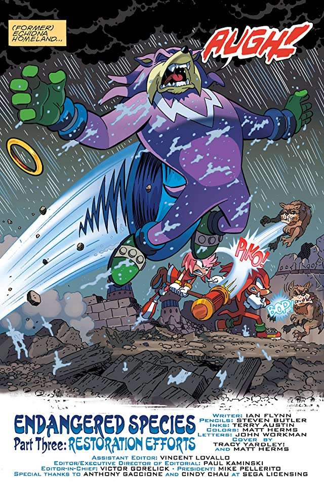 click for super-sized previews of Sonic the Hedgehog #245