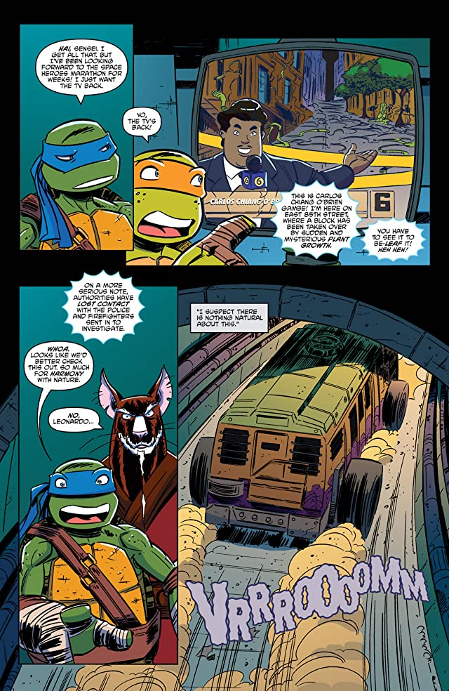 click for super-sized previews of Teenage Mutant Ninja Turtles: New Animated Adventures #2