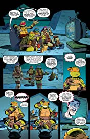 Teenage Mutant Ninja Turtles: New Animated Adventures #3