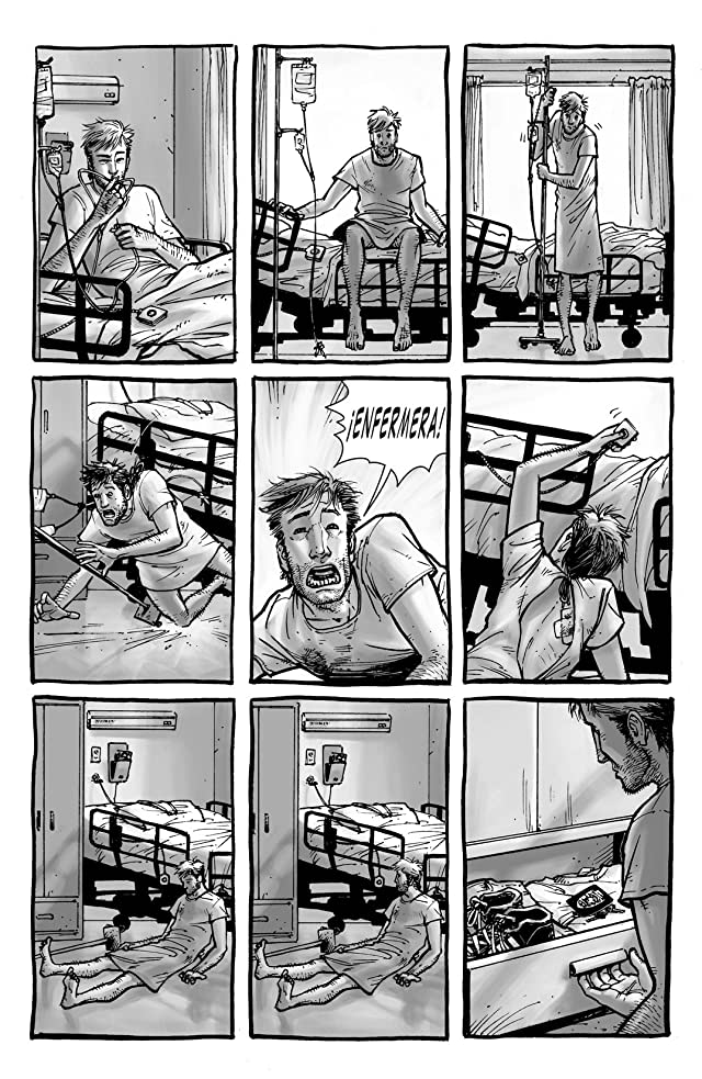 The Walking Dead (Spanish) Vol. 1: Dias Pasados