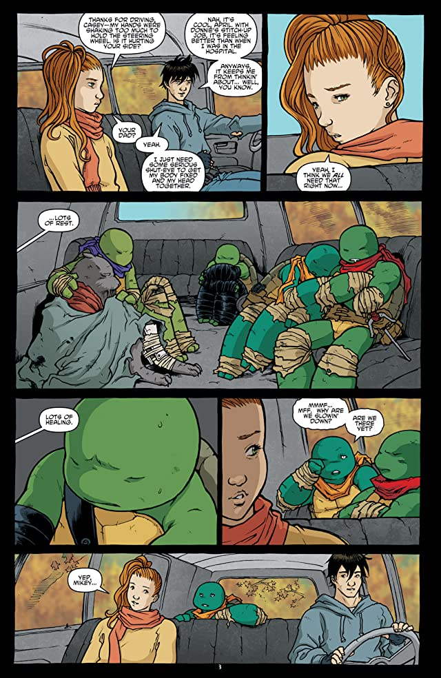 click for super-sized previews of Teenage Mutant Ninja Turtles #29