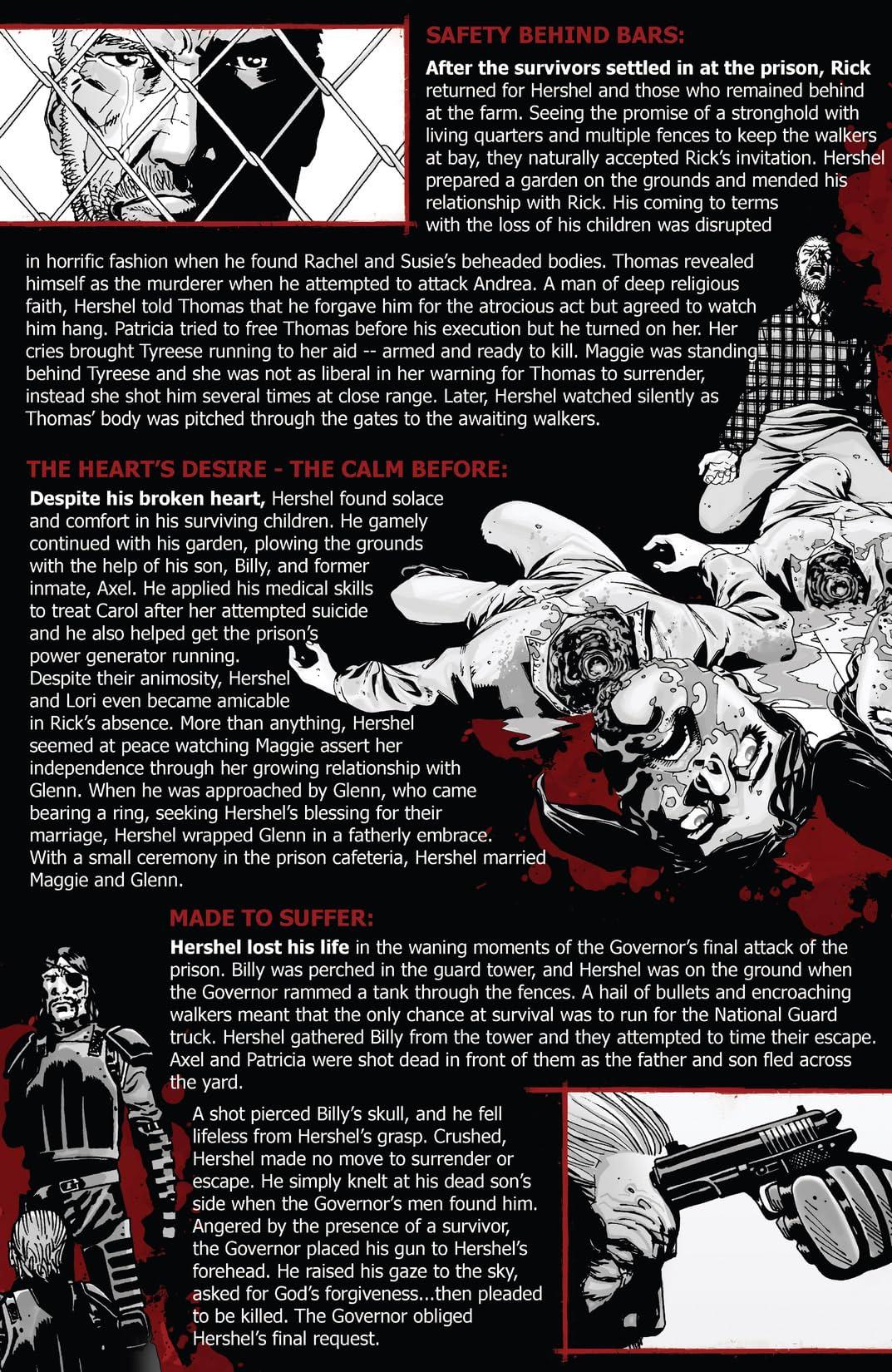 The Walking Dead Survivors' Guide #3 (of 4)
