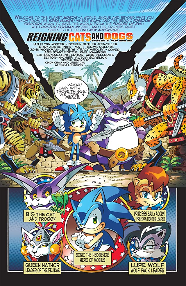 Sonic the Hedgehog #213