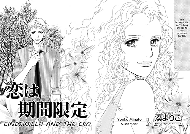 Cinderella and the CEO