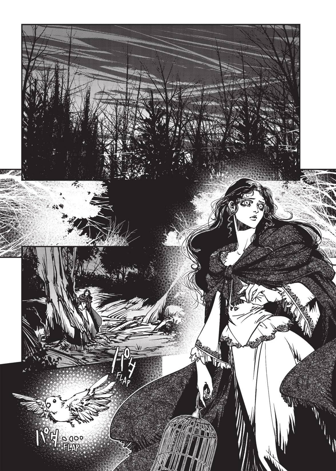 Hideyuki Kikuchi's Vampire Hunter D Vol. 3: Preview