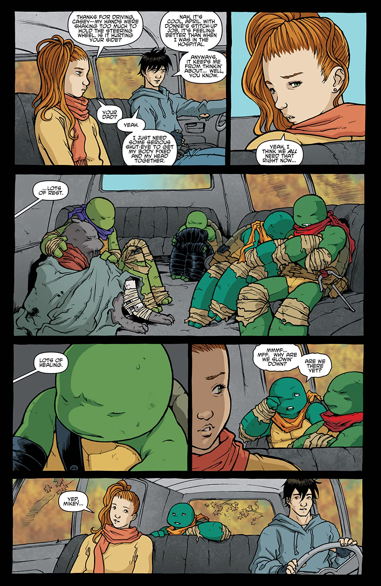 Teenage Mutant Ninja Turtles Vol. 8: Northampton