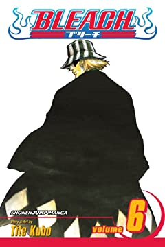 Bleach Vol. 6