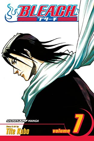 Bleach Vol. 7