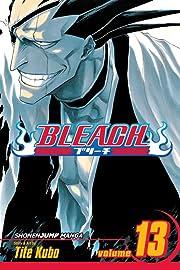 Bleach Vol. 13