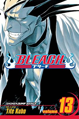 Bleach Vol. 13
