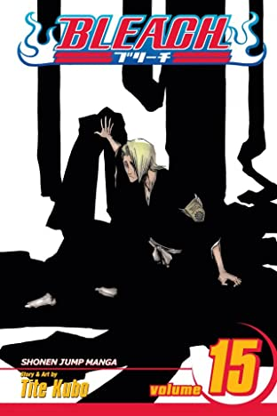 Bleach Vol. 15