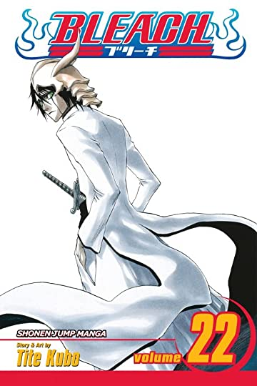 Bleach Vol. 22
