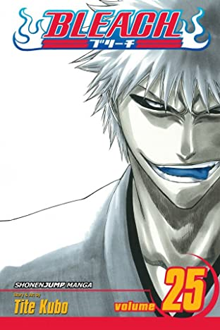Bleach Vol. 25