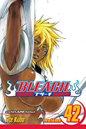 Bleach Vol. 42