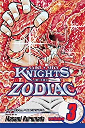 Knights of the Zodiac (Saint Seiya) Vol. 3