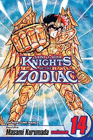 Knights of the Zodiac (Saint Seiya) Vol. 14