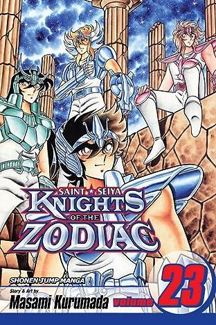 Knights of the Zodiac (Saint Seiya) Vol. 23