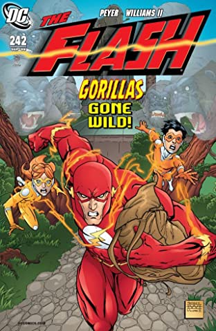 The Flash (1987-2009) #242