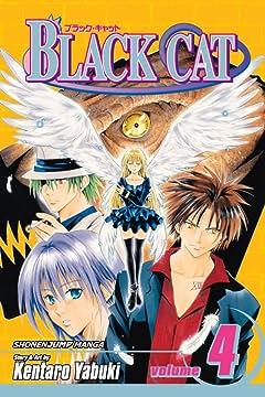 Black Cat Vol. 4