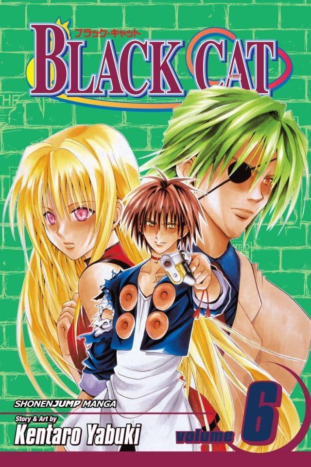 Black Cat Vol. 6