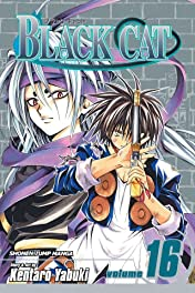 Black Cat Vol. 16