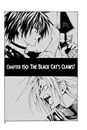 Black Cat Vol. 17