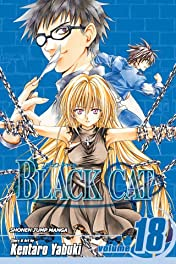 Black Cat Vol. 18