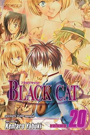 Black Cat Vol. 20