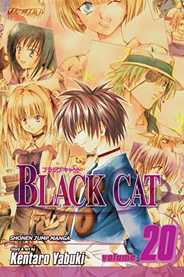 Black Cat Vol. 20