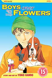 Boys Over Flowers Vol. 15