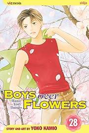 Boys Over Flowers Vol. 28