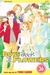 Boys Over Flowers Vol. 36