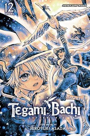 Tegami Bachi Vol. 12