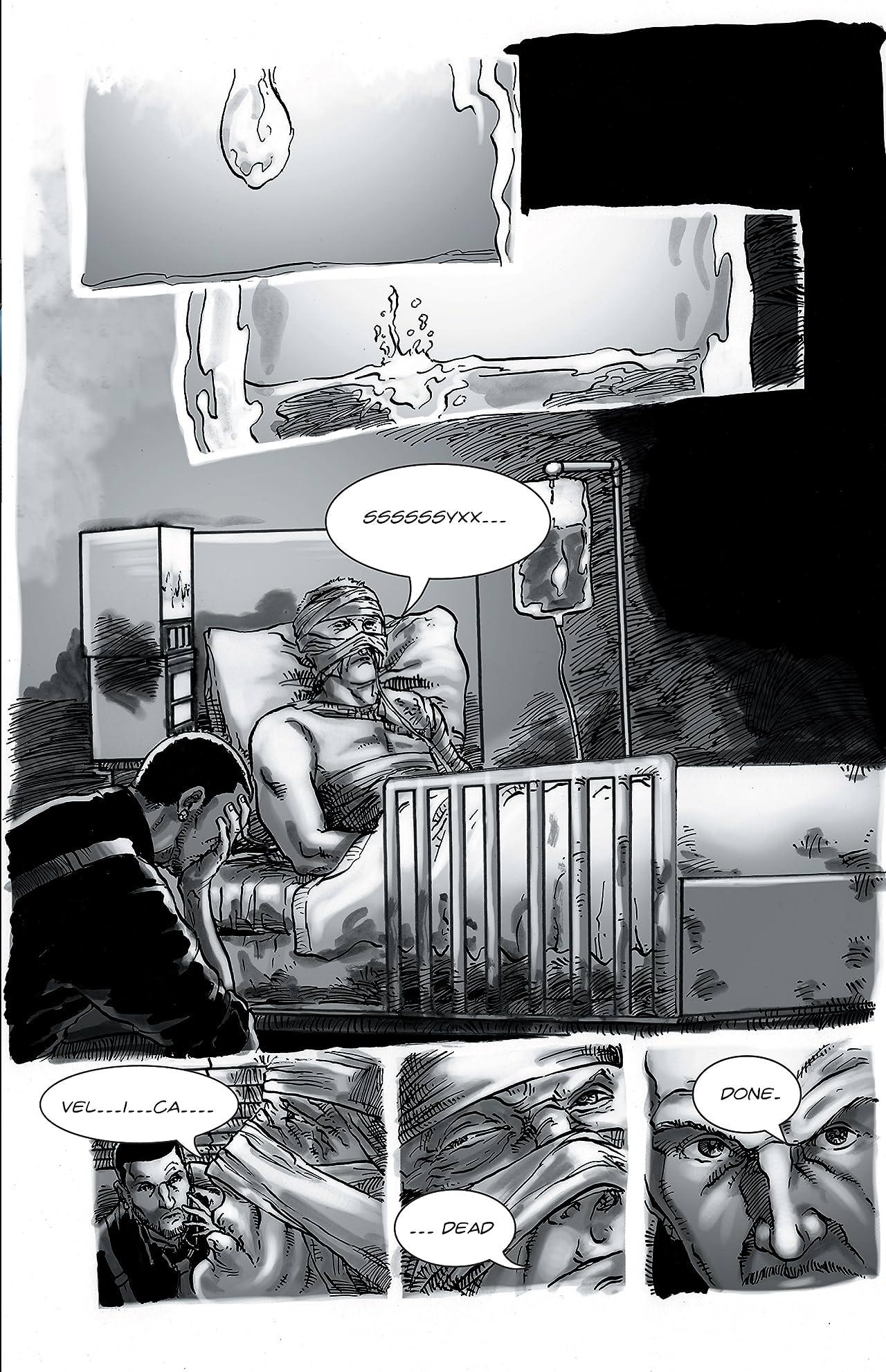 Velica #5