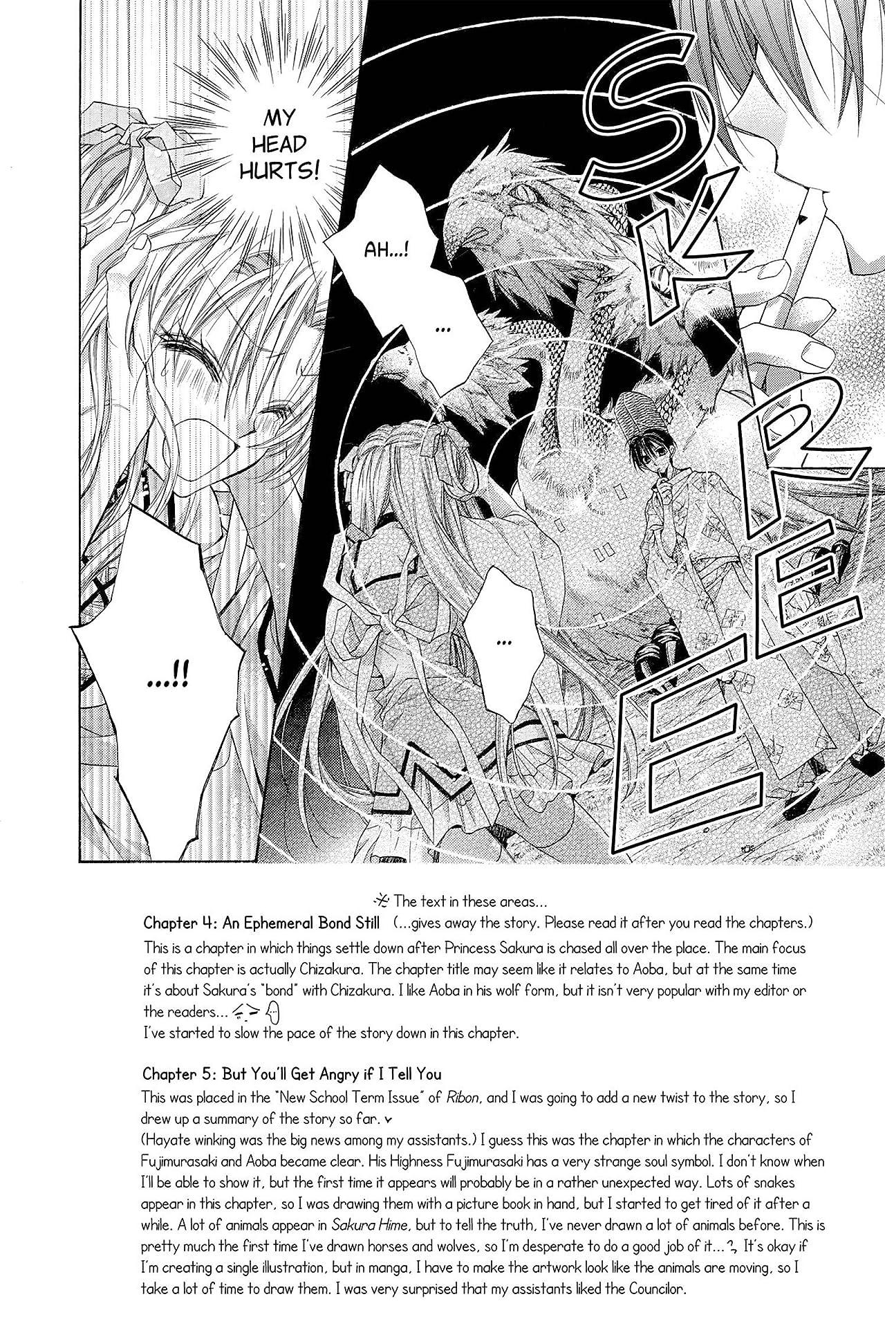 Sakura Hime: The Legend of Princess Sakura Vol. 2
