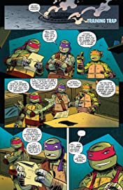 Teenage Mutant Ninja Turtles: New Animated Adventures #15