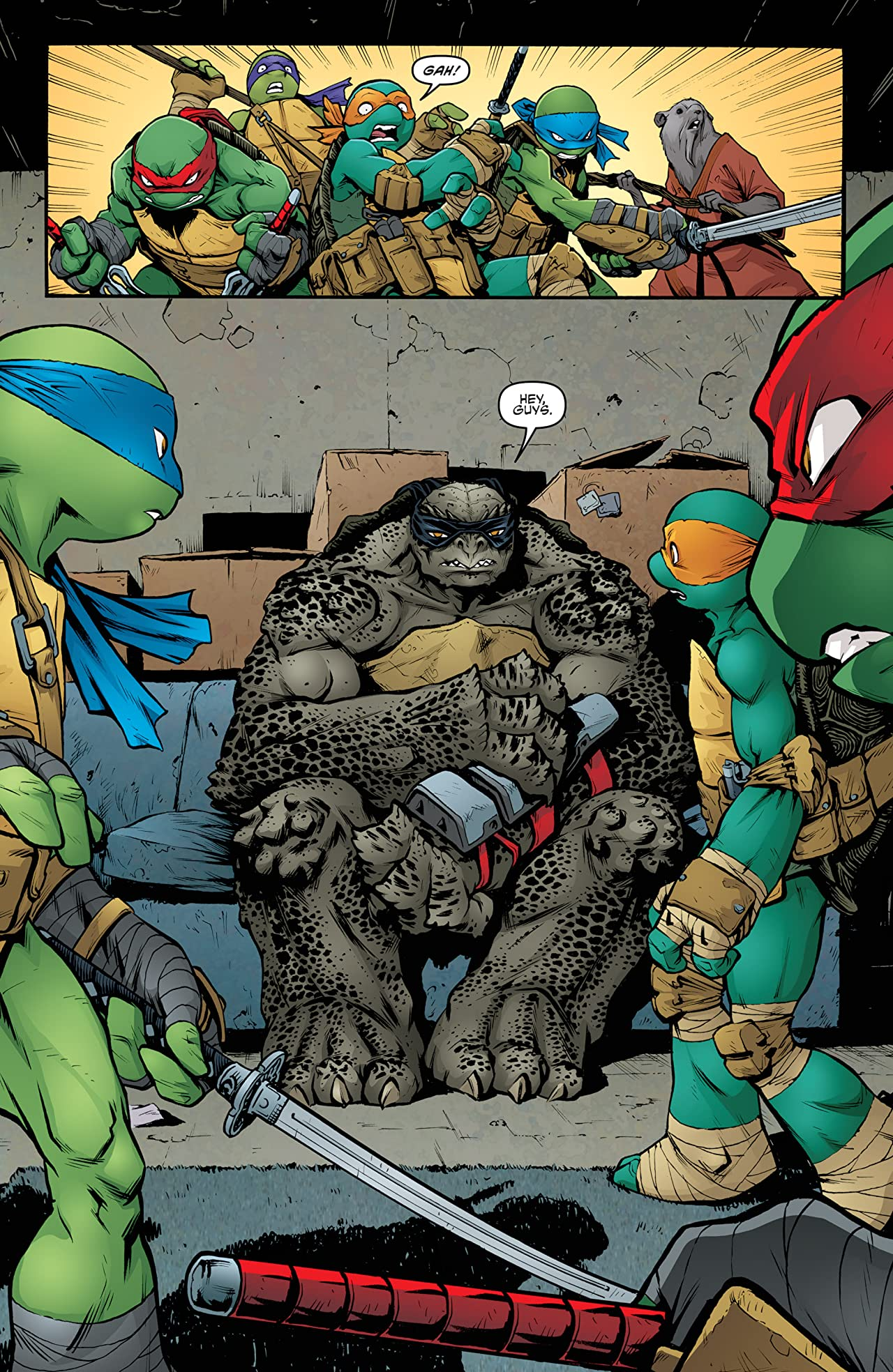 Teenage Mutant Ninja Turtles #38