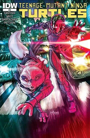 Teenage Mutant Ninja Turtles #40